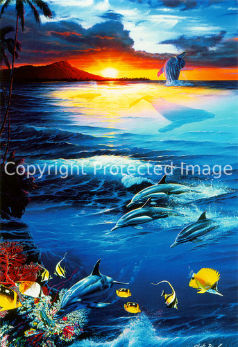 kb Lassen Greeting Cards Dawn of the Dolphin