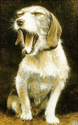 Louis Brasseur - Yawning dog